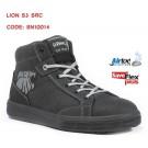 LION S3 SRC